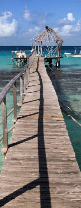 #tahiti, #tahitivibes, #tahitilife, #tahitibeach, #oceania, #pacific, #pacificocean, #borabora, #tahititourisme, #paradise, #paradiseisland, #polynesia, #frenchpolynesia, #polynesie, #beachlife, #artislife, #art life, #artoftheday, #frenchpolynesiaartist, #canon5dmarkIII,